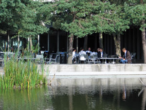 DTU: Courtyard
