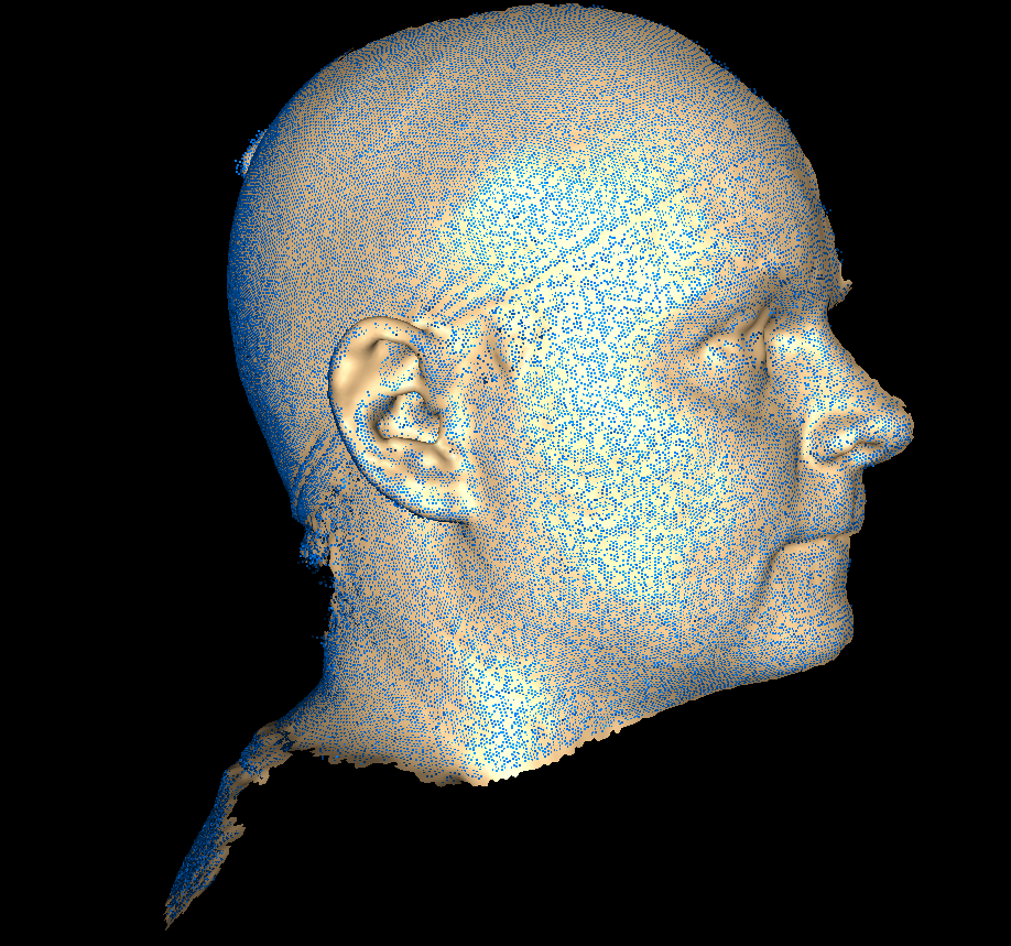 A 2 Pod Setup Is Used So Only One Side Of The Head Visible Raw 3dMD Data And Script Can Be